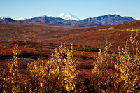 Alaska's Denali in Autumn